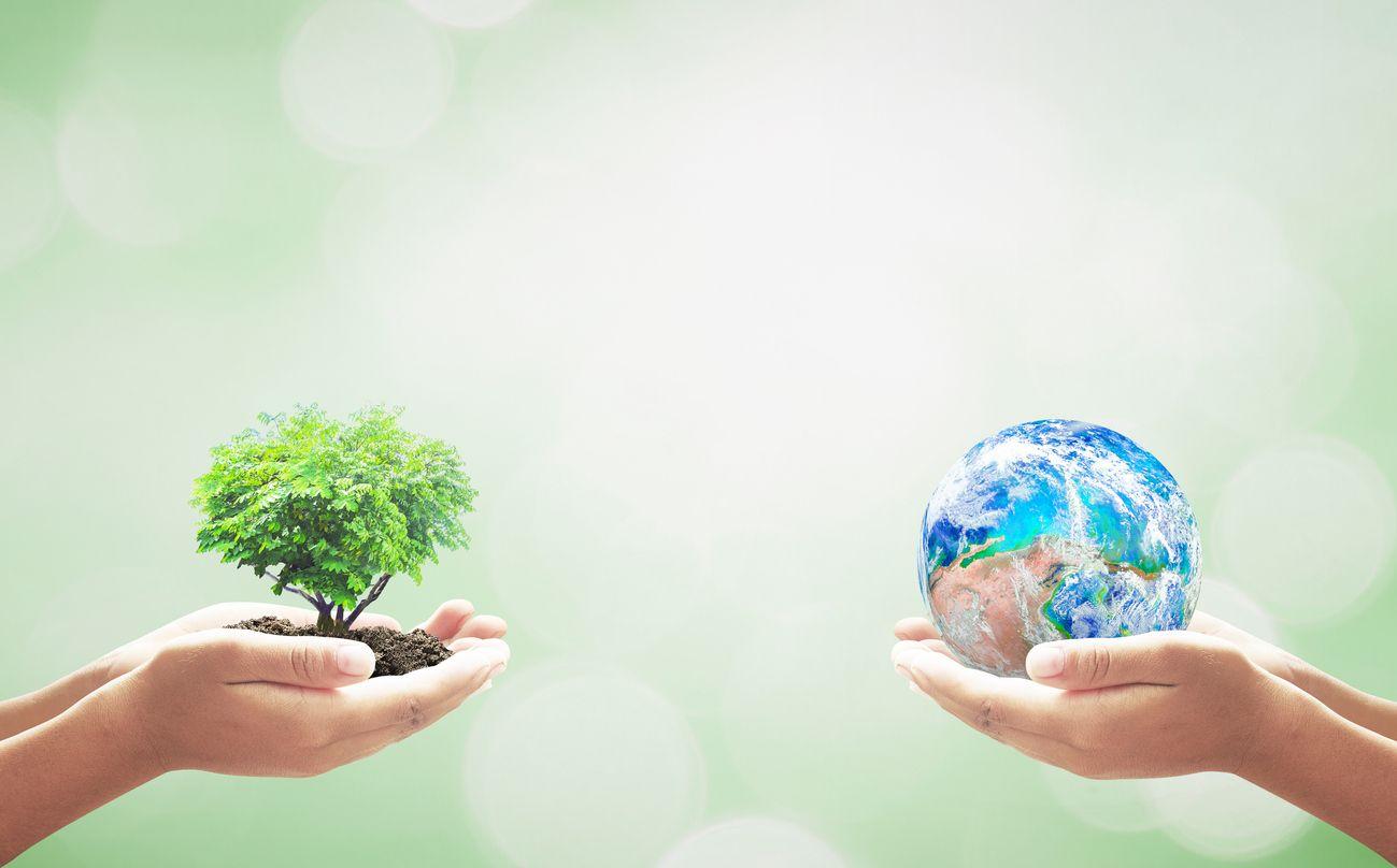 ley de responsabilidad medioambiental
